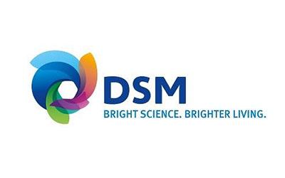 logo-afbeeldingen_0077_DSM Food Specialties